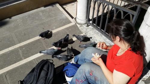 להלן, מעין, מאכילת היונים בונציה